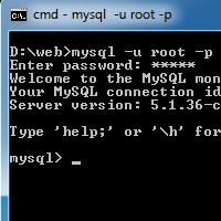 Using MySQL with the Command Line Client